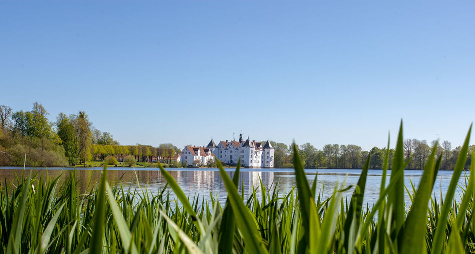 Plant Water Sky Day Lake Clear Sky Nature Beauty In Nature Tree Green Color Outdoors Castle Schloss Glücksburg See Beauty Mittelalter Architecture EyeEmNewHere