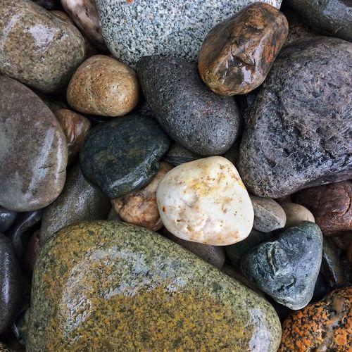 Wet rocks Rocks Wet Wet Rocks Nature Closeup Nature Photography
