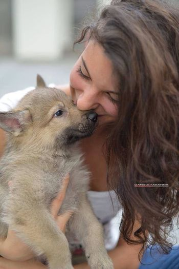 me and my sweet and beautiful wolf! That's Me