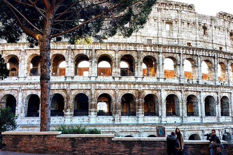 The best of Rome...😆😆Colosseum😍😍😍!!Rome Colosseum Travel Easytravel Travellifestyle December Monument Igers Igersrome Lazio Igerslazio Italy Igersitaly Tree Daylight Instapic Instamoment Instadaily Picoftheday Perfectplace Love Silent Turism Emotion Passionfortravel sunnyday dailypic