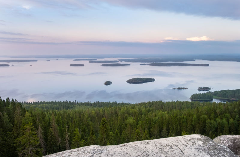 Scenic landscape with lake and sunset at evening in Koli, national park, Finland Sky Beauty In Nature Scenics - Nature Tranquility Tranquil Scene Plant Water Cloud - Sky Nature Tree Idyllic Land No People Non-urban Scene Growth Sea Green Color Evening Light Landscape Summer Sunset WoodLand Forest National Park Rock Stone Lake Spruce Tree Tree Horizon Over Water Moment Of Silence Koli