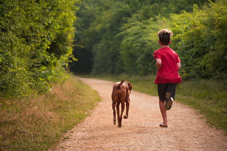 Rear View Of Boy Running With Dog Amidst Plants