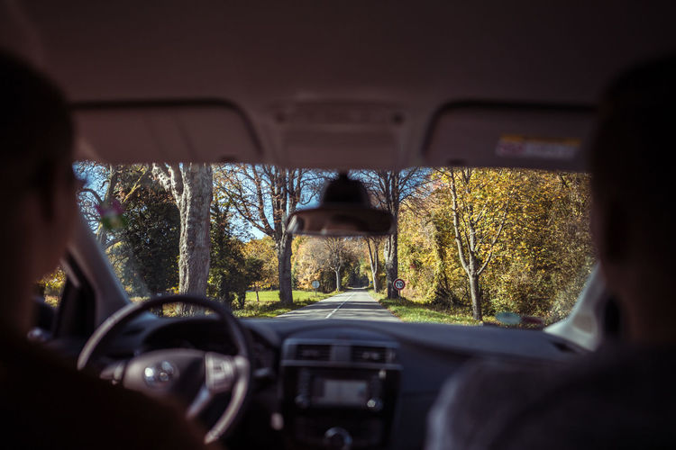 Avenue Boulevard Lifestyle Nature Road Travel Alley Car Car Interior Explore Focus On Distance France Streets Land Vehicle Landscape Outdoors Real People Transportation Tree Windshield