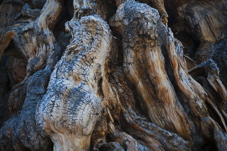 Close-up of rock formation