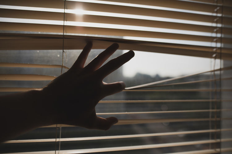 Cropped hand touching window blinds at home