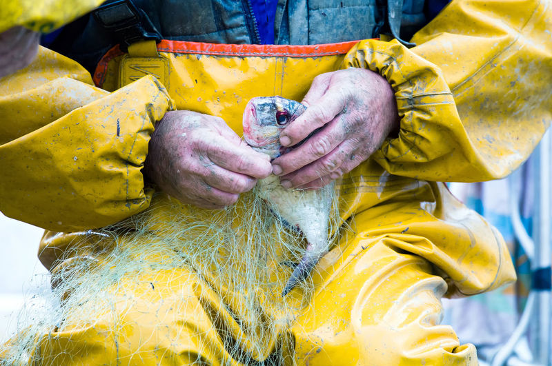 Midsection of fisherman holding fish