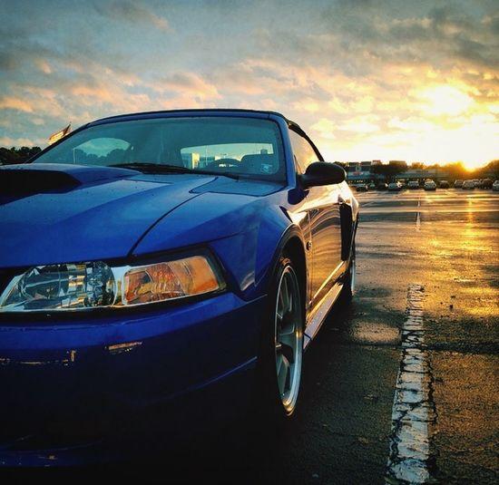 Mustang Mustang GT