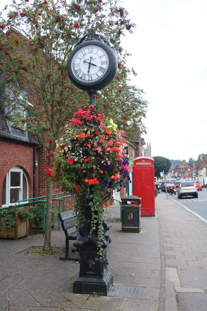 Architecture Beauty In Nature Building Exterior Built Structure Clock Day England, UK Façade Flower Freshness Growing Growth Marlboro Small Town Town Center Town Square