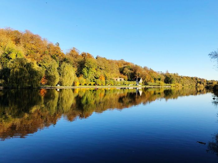 Autumn Reflections Reflection Water Sky Tranquility Scenics - Nature Clear Sky Beauty In Nature Tranquil Scene Tree Waterfront No People Blue Nature Day Idyllic Standing Water