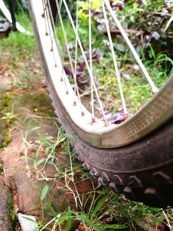 Bicycle Day Outdoors No People Close-up Grass Pedal Tire Spoke