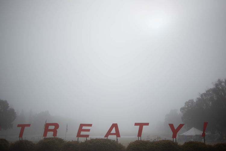 Beauty In Nature Communication Copy Space Day Environment Fog Land Landscape Nature No People Outdoors Plant Sign Sky Tranquil Scene Tranquility Tree White Color