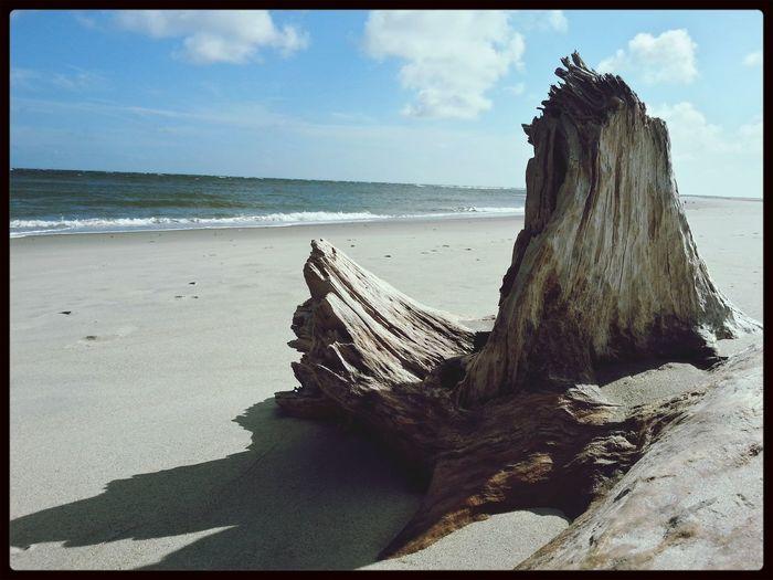 Holdenbeach On The Beach