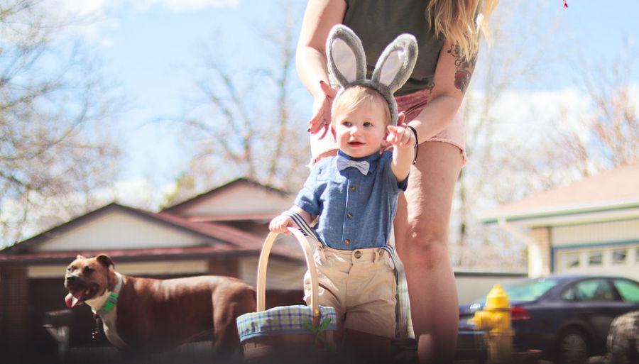 Easter family fun portrait of smal boy wearing bunny ears
