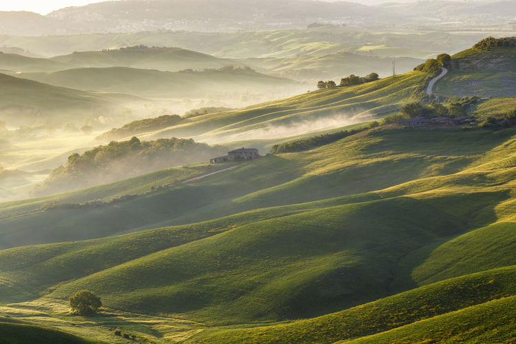 Rolling fields with fog in the valley at sunrise