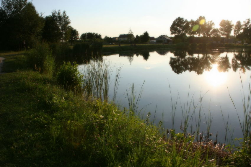 Lake Water Nature Reflection Sparkle Tranquil Scene Tranquility Reflection Quietly Beauty In Nature Day Outdoors No People Plant Sky Scenics Sunset Sunlight Beautiful Poland Been There.