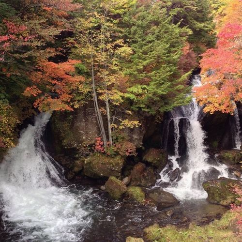 竜頭の滝 Nikko Ryuzufalls First Eyeem Photo