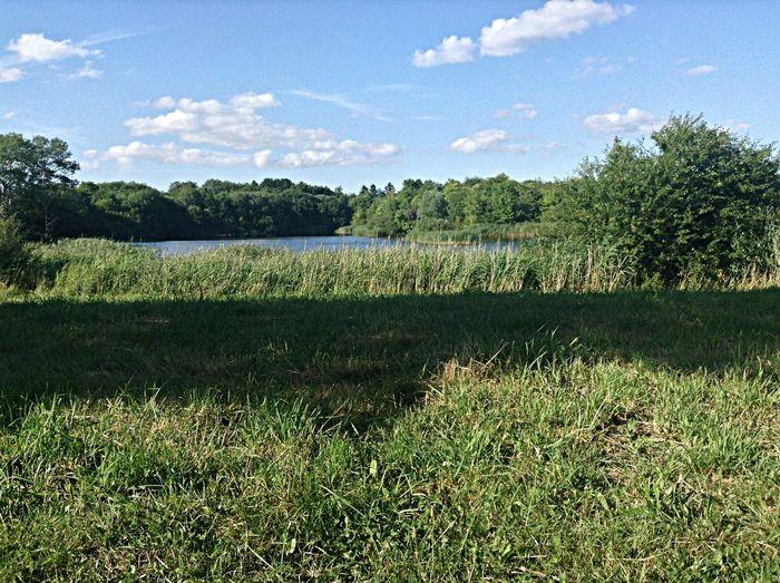 Tired Lost Lake Denmark Farer vild i Nivaa...