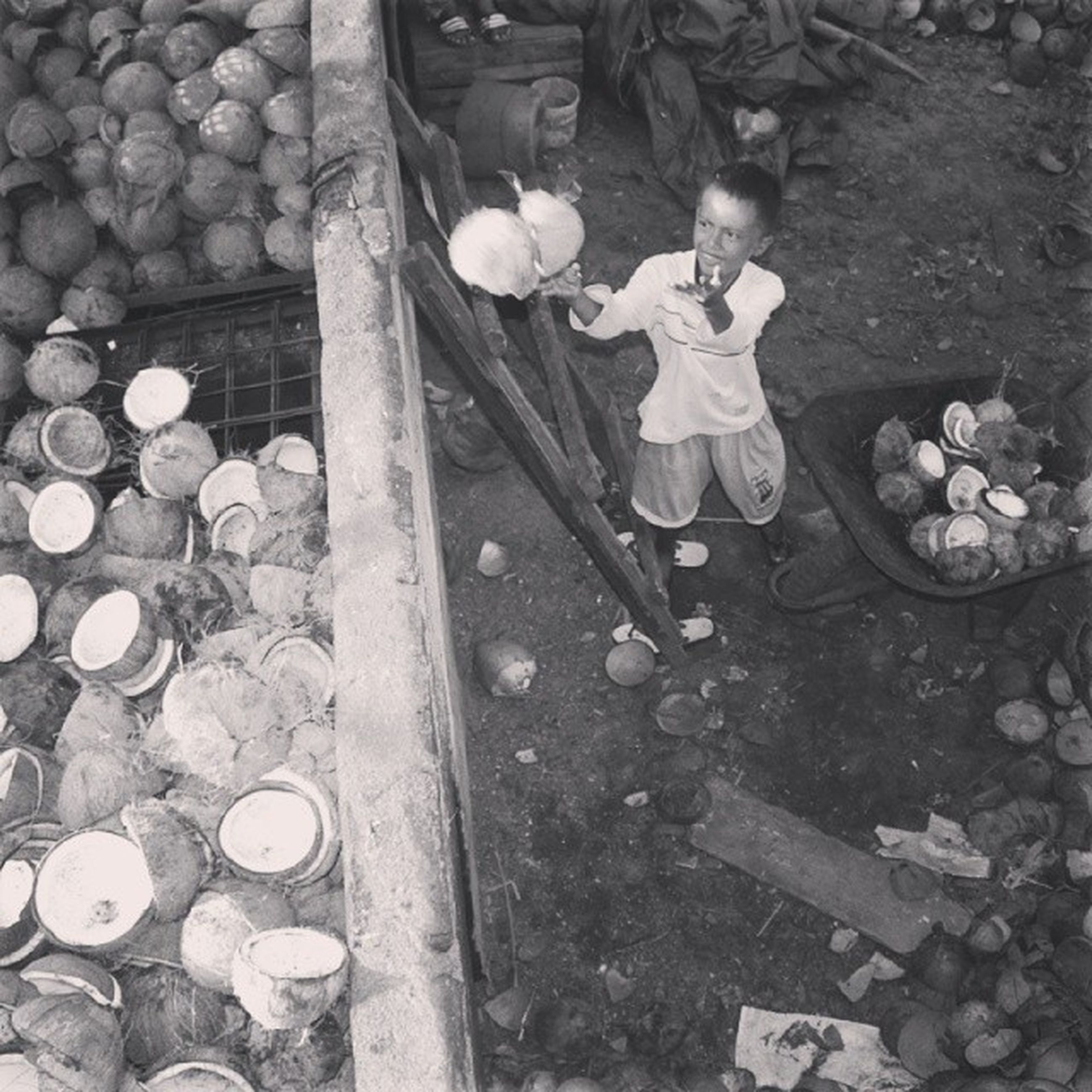 high angle view, wood - material, day, large group of objects, outdoors, abundance, stone - object, built structure, leaf, reflection, no people, wooden, pebble, messy, sunlight, abandoned, wood, nature, wall - building feature, old