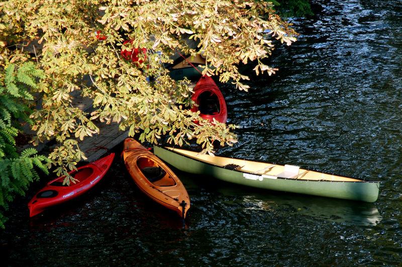 High Angle View Of Kayaks And Canoe Moored On River