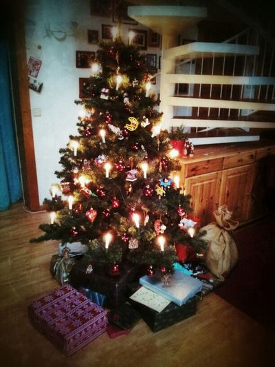 Christmas Tree Z's Christmas Journey