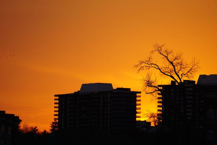 Evening walk Sunset Urban Landscape Sunset Silhouettes Silhouette Silhouettes Building Orange By Motorola