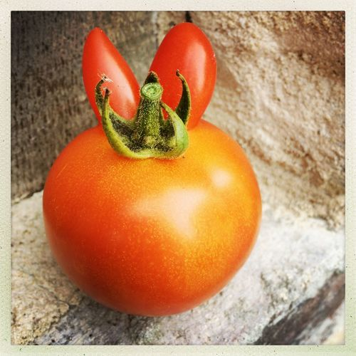 Food Food And Drink Freshness Fruit Healthy Eating Healthy Lifestyle Organic Red Tomato Vegetable