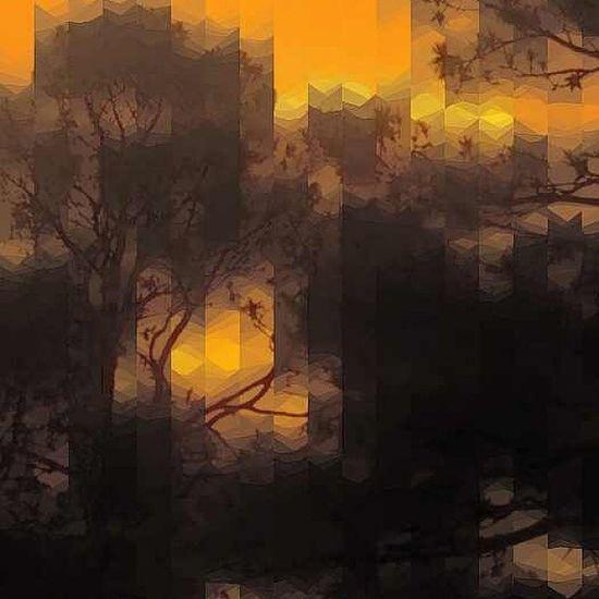 Sunset Instafamous Instafame