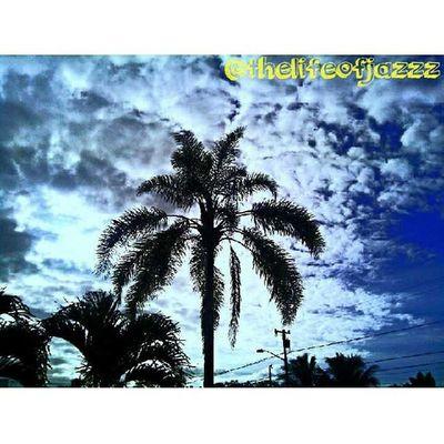 Good Morning everyone! Happy Sunday. ☀⛪ Hnnsunrise Hilo  Hawaii Bigisland 808 hilife luckywelivehawaii sunrise beautiful scenery pretty awesome amazing cool polynesian teampoly ig_hi ighi tattoo gauges piercings sunday church kanakahi venturehawaii glimpseofhawaii wearehawaii thelifeofjazzzphotography