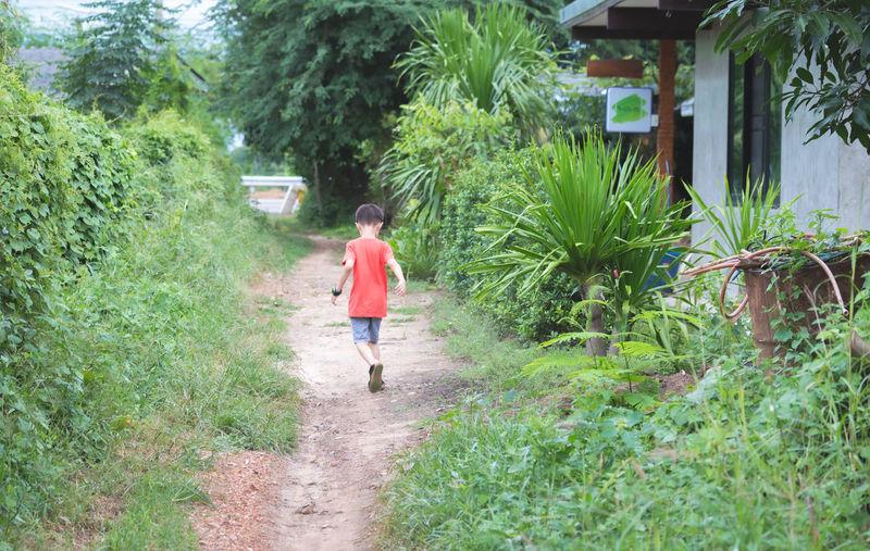 Full length of girl walking on footpath amidst plants