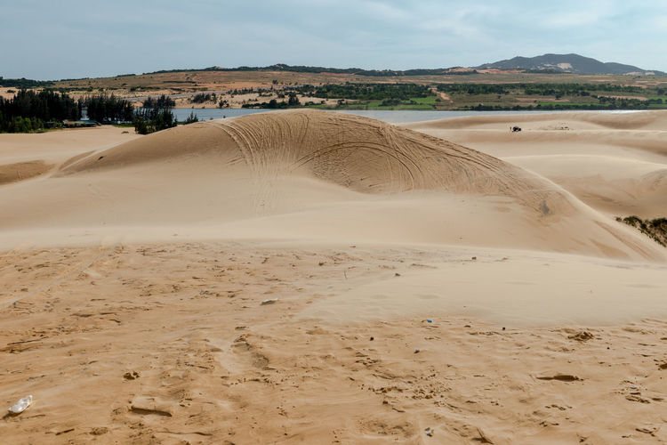Sand dunes, Mui Ne South Vietnam Dec 2016 Arid Climate Beach Beauty In Nature Day Desert Landscape Mammal Nature No People Non-urban Scene Outdoors Sand Sand Dune Scenics Sky Sky, Vietnam, Arabia, Backgrounds, Blue, Travel, City, Cultures, Desert, Dessert, Dry, Heat – Temperature, Horizontal, Journey, Landscape, No People, Pattern, Binh Thuan Province, Indochina, Land, Mui Ne Bay, Natural, Outdoors, Panoramic, Photography, Red Tranquil Scene Tranquility