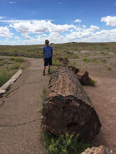 The Roll Top 10 Countdown number 6 ... My brother at Petrified Forest National Park ... Full Length Sky Landscape Tranquility Tranquil Scene Nature Solitude Beauty In Nature Remote Arid Climate Iphone 6 No Edit/no Filter