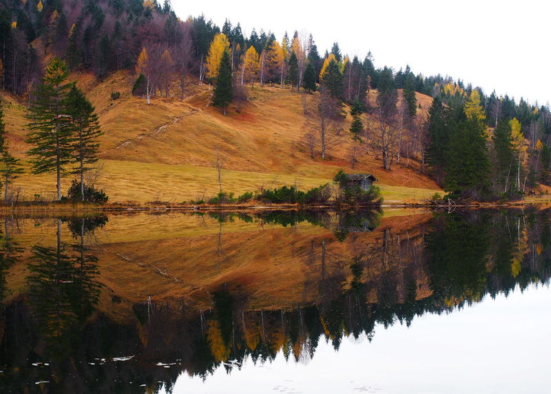 Autumn Colors Bayern Germany Berge Fall Beauty Ferchensee Garmisch Herbststimmung Hills Reflection Spiegelung Alps Austria Autumn Bavarian Alps Beauty In Nature E-pl5 Forest Lake Landscape Mittenwald Mountain Olympus Om-d E-m10 Reflection See Tancon