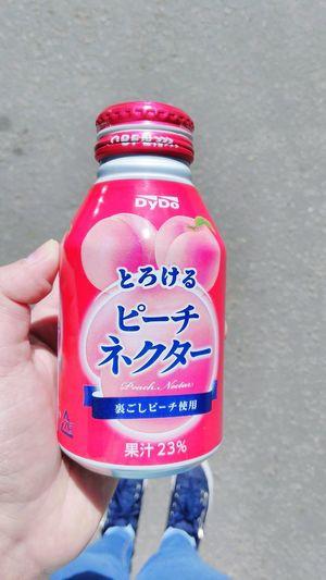Japanese Food Japanese Drink