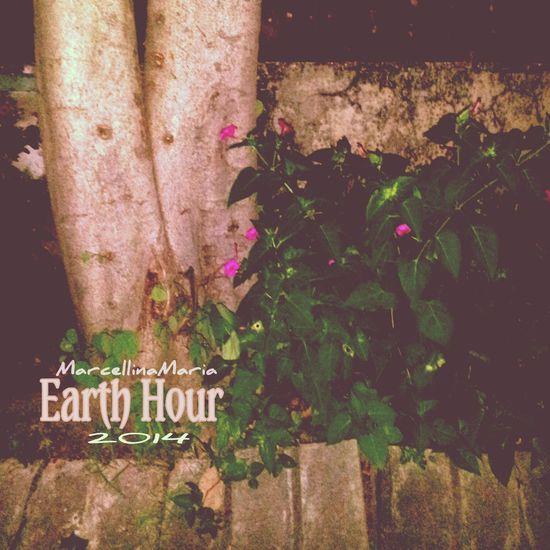 Earth Hour Earth Hour 2014