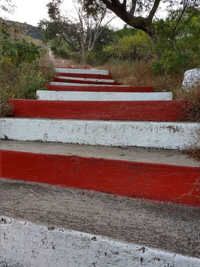 stairs to the chapell. Streetphotography Street Photography Streetphoto My Town My Town Countryside Country Countrylife Town Chappell Chapelle Stairs Tree Road Red Street Safety Striped Close-up
