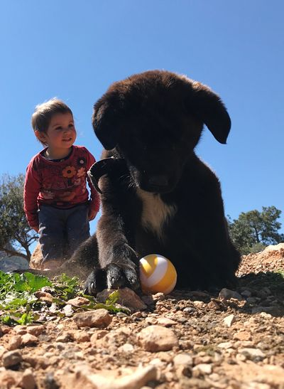 dog child and play Real People One Person Sky Child Nature Males  Boys Clear Sky Leisure Activity Men Childhood Sunlight Playing Day Toy Full Length Ball Land Casual Clothing Outdoors