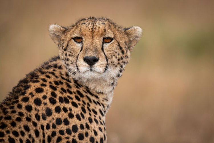 Photo taken in Aitong, Kenya