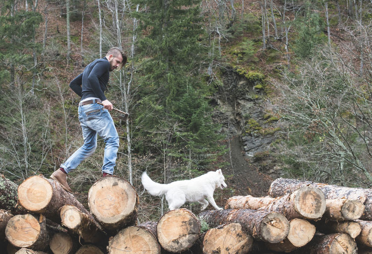 Low angle view of young man walking with dog on logs of wood