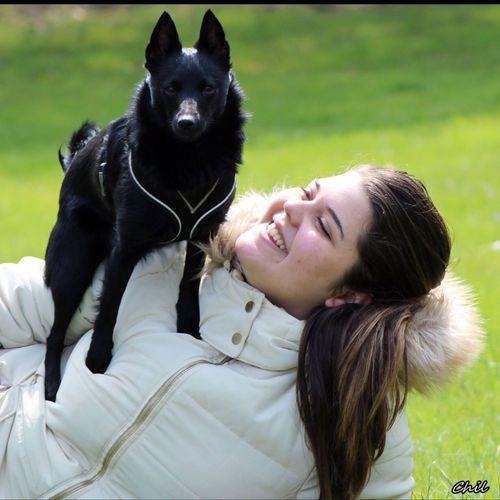 Schipperke Chien Dog First Eyeem Photo
