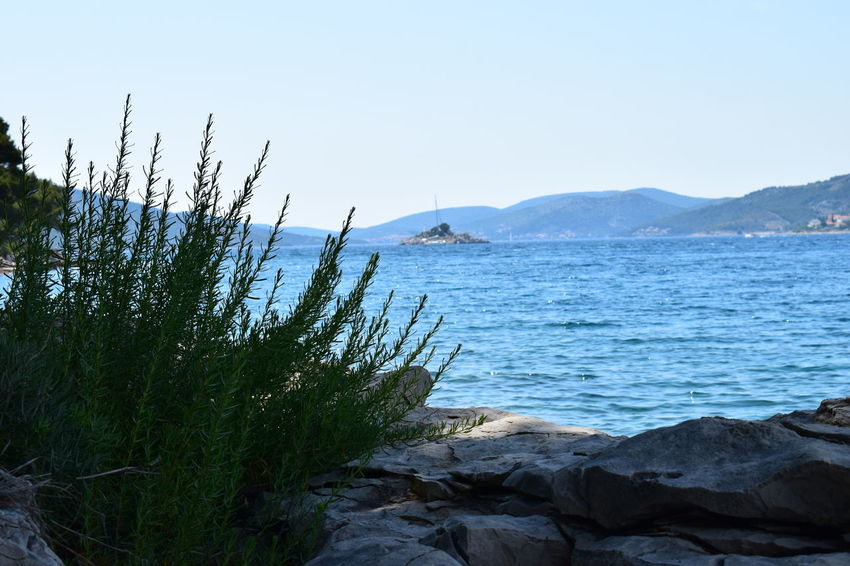 Beach Beauty In Nature Blue Clear Sky Croatia Day Grass Mountain Nature Nature Nature_collection Naturephotography No People Outdoors Peaceful Place Scenics Sea Sky Stones & Water Summertime Tranquil Scene Tranquility Travel Destinations Tree Water Been There.