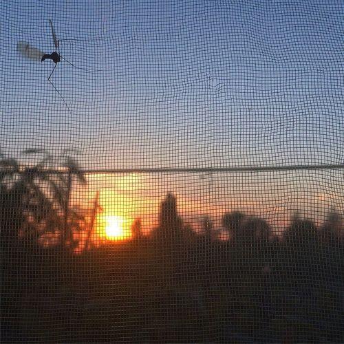 OpenEdit Vilkovo Sunset