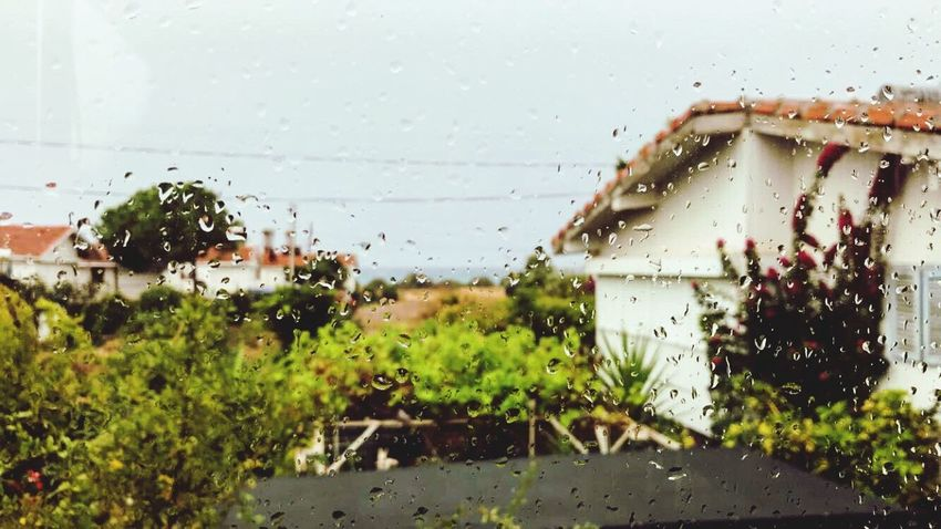 Drop Wet Window Rain Water Rainy Season RainDrop Focus On Foreground Architecture Built Structure Sky Indoors  No People Plant Freshness Yağmur Oba Bungalow Seaside Beach Box