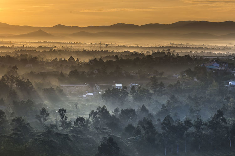 Sunrays at valley on Bao Loc town in Lam Dong province, Vietnam. Baoloc Beauty In Nature Church Culture And Tradition Day Environmental Conservation Fog Hazy  Lam Dong, Viet Nam Landscape Mist Mountain Nature Outdoors Peaceful Pine Forest Scenics Sky Sunrays Sunset Temperature Tranquil Scene Tranquility Tree Valley