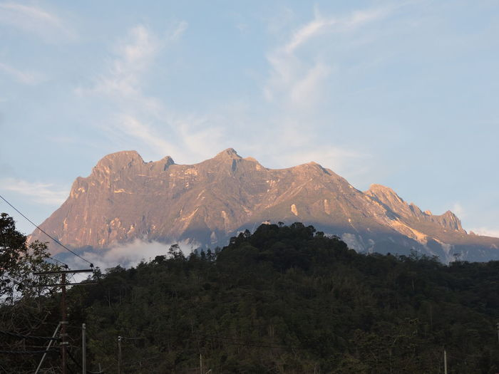 Mount Kinabalu Mountain Snow Winter Tree Area Astronomy Mountain Peak Forest Pinaceae Tree Snowcapped Mountain Star Field Galaxy Rock Formation Rocky Mountains Milky Way Geology Physical Geography Rugged