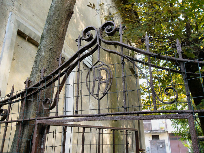 Architecture Building Exterior Built Structure Day Nature No People Outdoors Rampicante Rusted Metal  Secret Place Stone Lions Tree Wrought Iron Gate The Graphic City