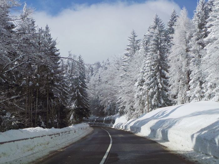Pohorje Slovenia Slovenia Slovenia Scapes Beauty In Nature Cold Temperature Curved Road Day Frozen Landscape Nature No People Outdoors Pohorje Road Scenics Sky Snow The Way Forward Tranquil Scene Tranquility Transportation Tree Weather White Color Winter