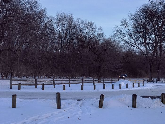 Winter Wonderland Cold Temperature Tree Snow Winter Bare Tree Nature Day No People Tranquility Outdoors Beauty In Nature Sky Winter Landscape Driving Car The Week Of Eyeem The Week On EyeEem The Week On EyeEm Exceptional Photographs Oswego, IL