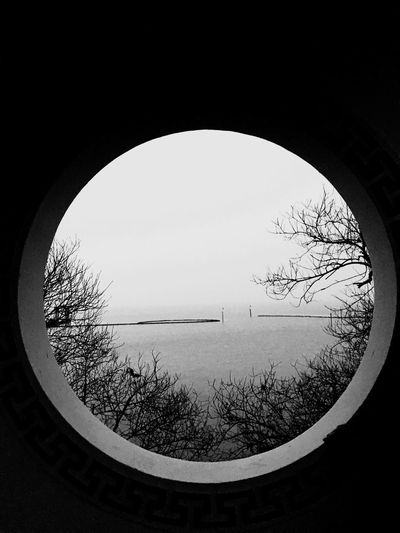 Circle Water Tree No People Nature Tranquility Day Clear Sky Winter Sky Beauty In Nature Fish-eye Lens