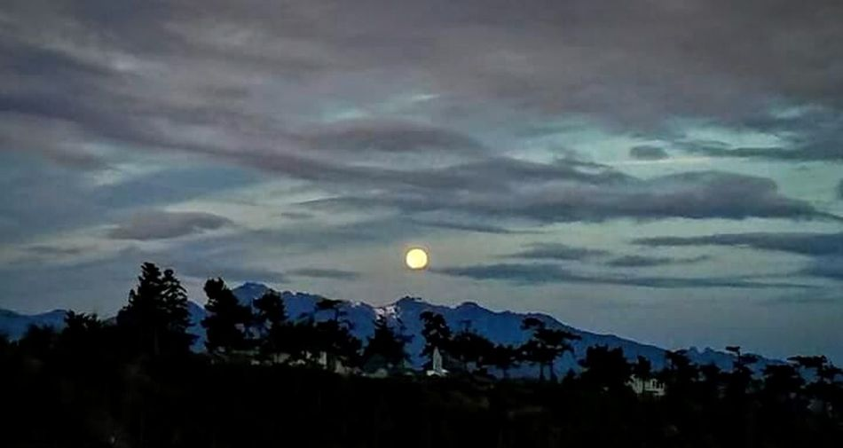 Moon Full Moon Cloud - Sky Tree Dusk Astronomy Scenics Pinaceae Mountain Sky Silhouette Nature Landscape Forest Tranquility Beauty In Nature Night Moonset At Sunrise Beach Sunrise Check This Out Tree Low Angle View Sea Water