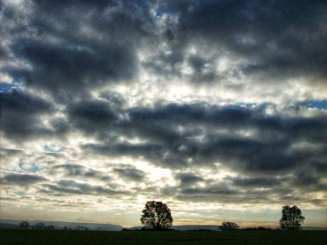 Cloud - Sky Dramatic Sky Sky Tranquility Tranquil Scene Cloudscape Tree Beauty In Nature Nature Storm Cloud Scenics Weather Outdoors No People Landscape Sunset